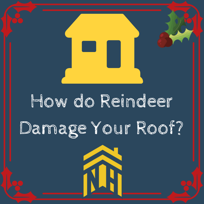 How Do Reindeer Damage Your Roof